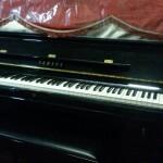 ShengEn Piano